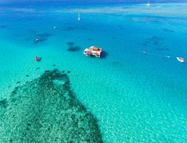 Vom Korallenanpflanzen bis hin zur Meeresschule in Fiji