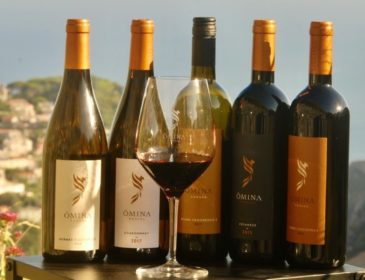 VINO e OPERA vom Weingut ÔMINA ROMANA